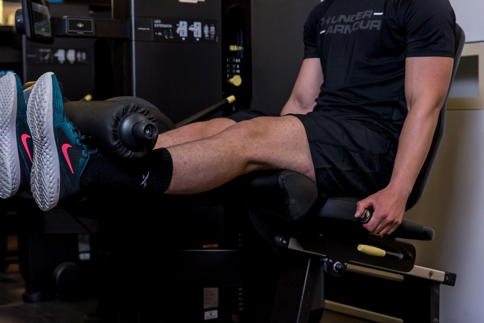 Leg Extension